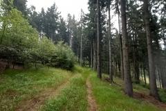 g200830044-Stavba-APK-Pod-Turnovskou-lesni-cesta